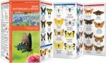 Texas Butterflies & Moths (Pocket Naturalist® Guide)