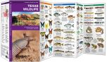 Texas Wildlife (Pocket Naturalist® Guide)