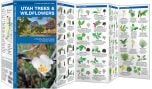 Utah Trees & Wildflowers (Pocket Naturalist® Guide)