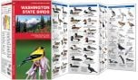 Washington State Birds (Pocket Naturalist® Guide)