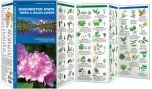 Washington State Trees & Wildflowers (Pocket Naturalist® Guide)