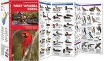 West Virginia Birds (Pocket Naturalist® Guide).