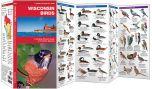 Wisconsin Birds (Pocket Naturalist® Guide)