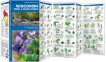 Wisconsin Trees & Wildflowers (Pocket Naturalist® Guide)