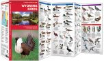 Wyoming Birds (Pocket Naturalist® Guide)