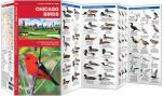 Chicago Birds (Pocket Naturalist® Guide)