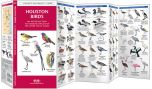 Houston Birds (Pocket Naturalist® Guide)