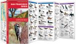 San Francisco Birds (Pocket Naturalist® Guide)
