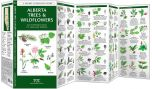Alberta Trees & Wildflowers (Pocket Naturalist® Guide)