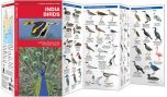 India Birds (Pocket Naturalist® Guide)