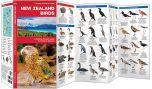 New Zealand Birds (Pocket Naturalist® Guide)