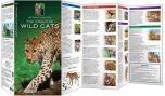 World Of Wild Cats