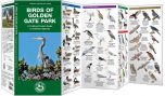 Birds of Golden Gate Park (Pocket Naturalist® Guide)