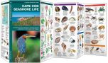 Cape Cod Seashore Life (Pocket Naturalist® Guide)