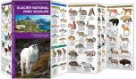 Glacier National Park Wildlife (Pocket Naturalist® Guide)