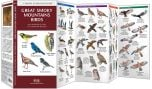 Great Smoky Mountains Birds (Pocket Naturalist® Guide)