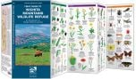 Field Guide to Wichita Mountains Wildlife Refuge (Pocket Naturalist® Guide)