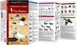 Cornell Lab of Ornithology Waterfowl ID #1: The Basics