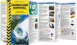 Hurricane Survival (A Disaster Survival Guide®)