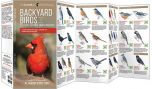 Backyard Birds: Eastern & Central North America (All About Birds Pocket Guide®)