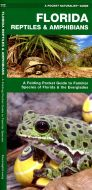 Florida Reptiles & Amphibians (Pocket Naturalist® Guide)