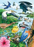 North American Birds (35-Piece Tray Puzzle)