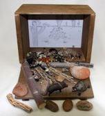 Desert Diorama (Create-A-Scene® Habitat Diorama Kit)