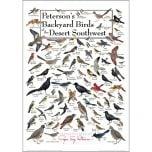 Peterson's Backyard Birds of the Desert Southwest Poster