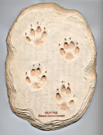 Fox (Gray) Track Cast (Large Plaque)