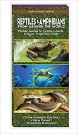 Reptiles & Amphibians from Around the World: Folding Pocket Guides to Turtles, Lizards, Snakes, Frogs and Toads (Our Living Earth® Series)