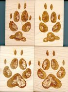 Coyote Track Stamp Collection (4 Rubber Stamps)