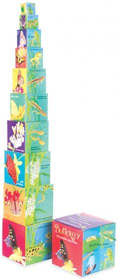Stacking Blocks - Butterfly/Frog Metamorphosis.