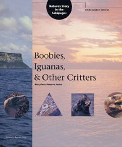 Boobies, Iguanas, & Other Critters