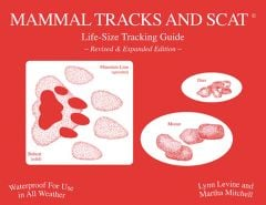 Mammal Tracks and Scat: Life-Size Tracking Guide