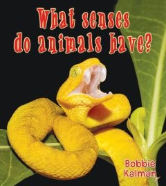What Senses Do Animals Have? (Big Science Ideas Series)