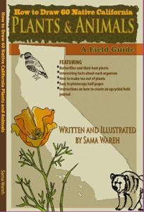 How to Draw 60 Native California Plants & Animals