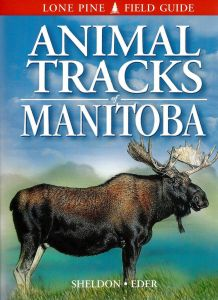 Animal Tracks: Manitoba (Lone Pine Tracking Guide)