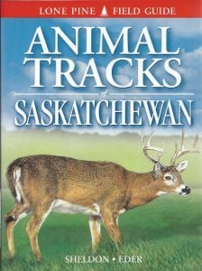 Animal Tracks: Saskatchewan (Lone Pine Tracking Guide)