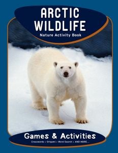 Arctic Wildlife Nature Activity Book