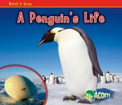 Penguin's Life, A (Watch It Grow Series)