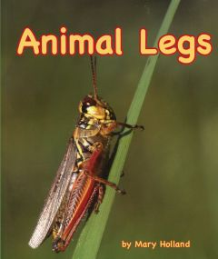 Animal Legs (Animal Senses & Anatomy Series)