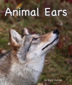Animal Ears (Animal Senses & Anatomy Series)