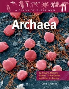 Archaea (A Class of their Own Series)