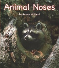 Animal Noses (Animal Senses & Anatomy Series)