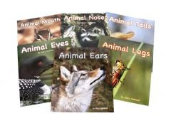 Animal Senses & Anatomy Series Collection (Discounted Set of 6 Titles)