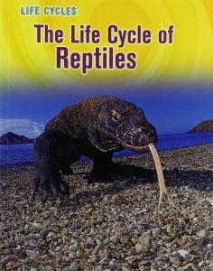 Life Cycle of Reptiles, The (Animal Class Life Cycle Series)