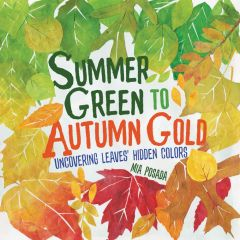 Summer Green to Autumn Gold: Uncovering Leaves' Hidden Colors
