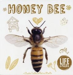 Honey Bee (Life Cycles Series)