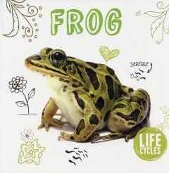Frog (Life Cycles Series)
