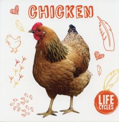 Chicken (Life Cycles Series)